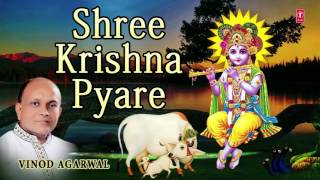 SHREE KRISHNA PYARE KRISHNA BHAJAN BY VINOD AGARWAL I AUDIO SONG I ART TRACK