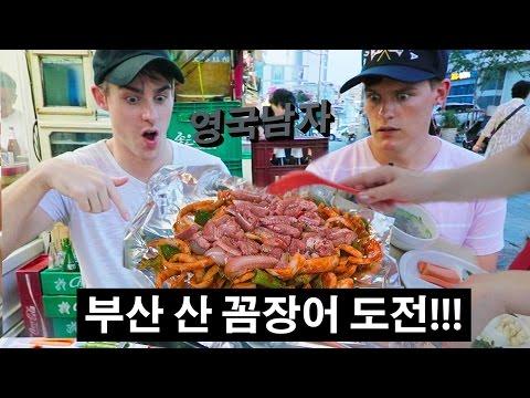 Xxx Mp4 부산의 산 꼼장어에 도전한 영국남자 조엘 Live Eel Challenge In Busan 3gp Sex