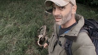 Why Is Ed Stafford Worried After Stumbling On A Horse Carcass?