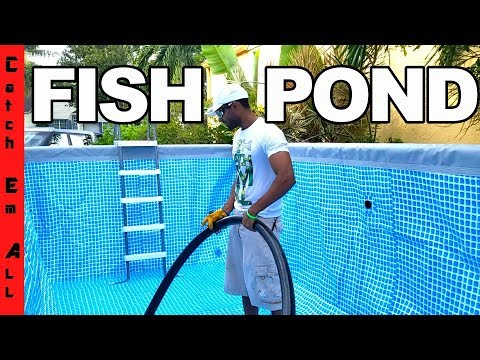 BUILDING POOL POND for MEGA PREDATOR FISH!