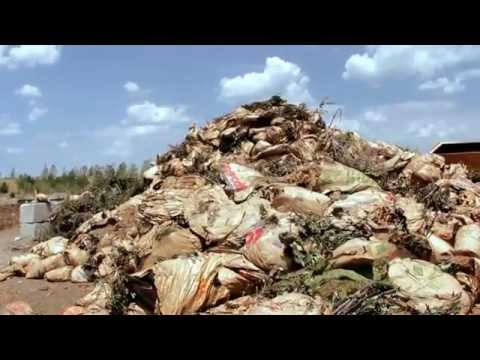 Commercial Compost operation by Deffenbaugh in Kansas City