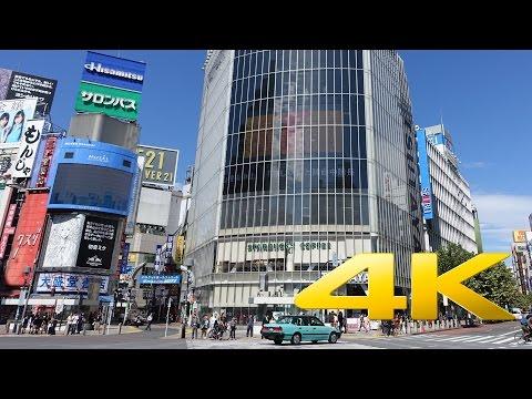Shibuya Crossing Tokyo 渋谷スクランブル交差点 4K Ultra HD