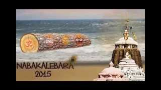 Interesting facts about the Nabakalebara and Puri Jagannath temple