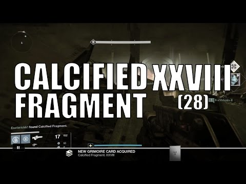 Destiny - Calcified Fragment: XXVIII (28)