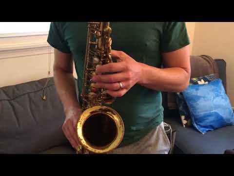 Xxx Mp4 1969 171 Xxx Selmer Mark VI Alto Saxophone Demo DC Sax 3gp Sex