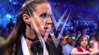 Daniel Bryan vs Triple H WrestleMania 30