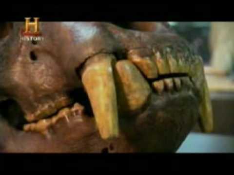 Mundo Jurásico Bestias de la era de hielo Parte 1 de 6