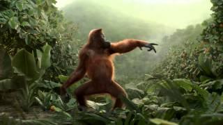 Morning - Crazy Funny Monkey Dance for Rynkeby (by Nørgård Mikkelsen)