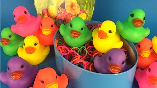 Counting Rubber Ducks - Learn to count and learn the colors by DisneyToysReview