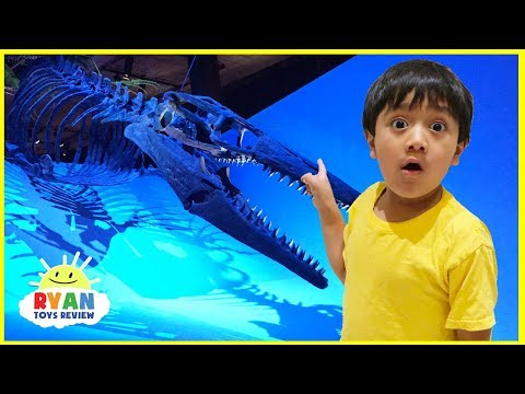 Xxx Mp4 Dinosaur Science Children S Museum For Kids With Ryan ToysReview 3gp Sex