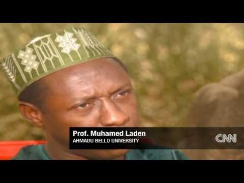 Quran schools in Nigeria
