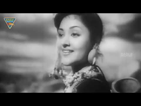 Xxx Mp4 Nagin 1954 Hindi Full Length Movie Vyjayanthimala Pradeep Kumar Bollywood Old Movies 3gp Sex