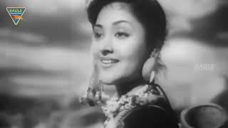 Nagin (1954) Hindi Full Length Movie || Vyjayanthimala, Pradeep Kumar || Bollywood Old Movies