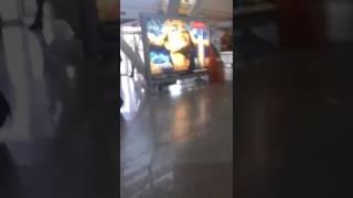 Curriculum falso: Giulia Moi aggredita verbalmente all'aeroporto di Olbia
