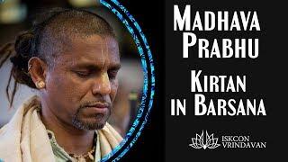 Hare Krishna Kirtan by Madhava Prabhu in Barsana