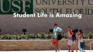 Univesity of South Florida Tampa - 5 Things I Wish I Knew Before Attending