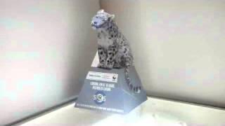 Project SOS: Snow Leopard Installation