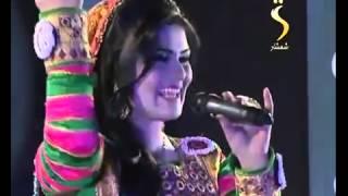 Brishna Amil ( Tagi Bragi )
