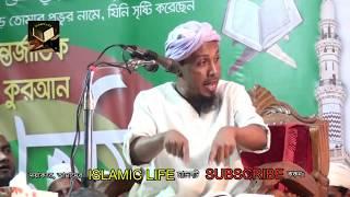 রফিক উল্লাহ আফসারী নতুন ওয়াজ ২০১৮ - Rafiqullah Afsari New Waz 2018 - IslamicLife