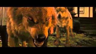 Twilight wolf scenes