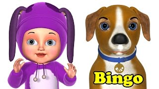 Bingo Dog Song - Bingo Kids
