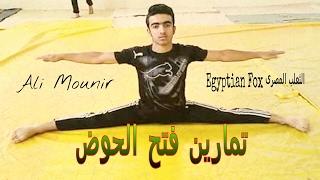 تمارين فتح الحوض مع الثعلب المصرى ونصائح لعدم الاصابات  How to do the splits