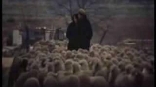 Un homme et une femme - Mireille Mathieu