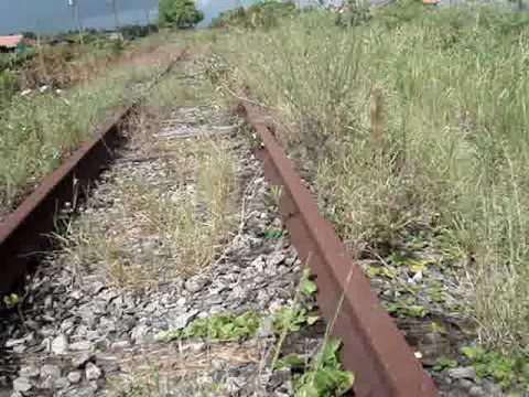 Trem Bala Brasileiro