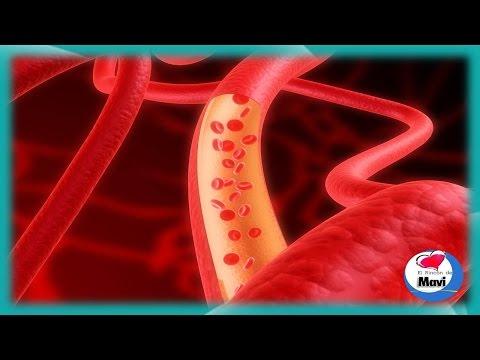 Como mejorar la circulacion de la sangre de forma natural