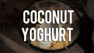 The Raw Chef TV | Raw food recipe for coconut yoghurt