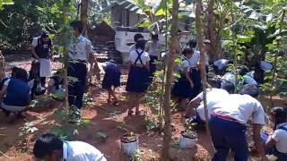 Kalloorkad Grama Panchayat Ward 12 Kalloorkad