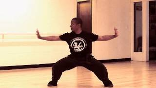 Tiger Style  Traditional Kung Fu Form