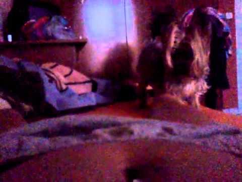 Xxx Mp4 My Dog Wants F Ck My Foot 3gp Sex