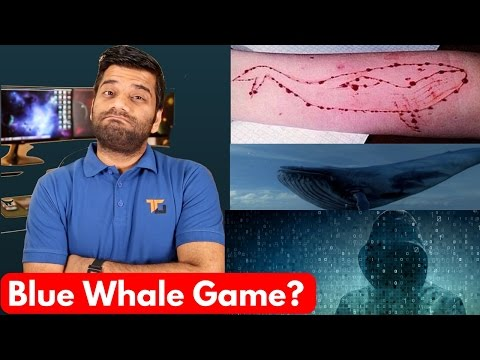Xxx Mp4 Blue Whale Game The Killer Game Stay Away 3gp Sex