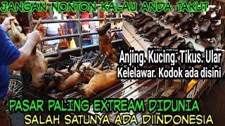 ANDA BERANI KESINI? DAGING KUCING,ANJING,TIKUS,ULAR DIJUAL BEBAS DISINI (PASAR EXTREME INDONESIA)
