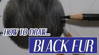 REALISTIC BLACK FUR | Coloured Pencil Tutorial | Advent Day 1 ☃️