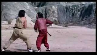 Jackie Chan vs Hwang Jang Lee- Snake In The Eagles Shadow End Fight [HQ].m4v