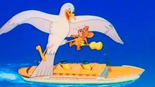 Tom and Jerry - Cruise Cat - Episode 71 - Tom and Jerry Cartoon ► iUKeiTv™