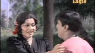 The best double meaning hindi song ever.flv