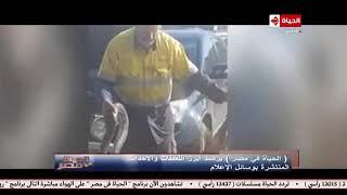 الحياة في مصر | أفعي تختبئ بمحرك سيارة/ جمل يقتحم سيرك ويصيب 7 أشخاص! تقرير: ريم سمير