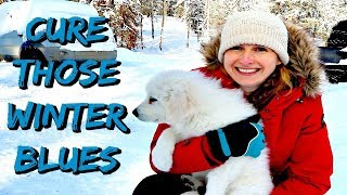 A Remedy for the Winter Blues | A New Family Member