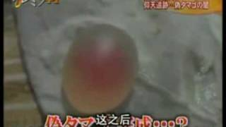 Investigation of fake eggs in China. by FujiTV
