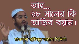 Maulana Hafizur Rahman Siddiki 2018|New Waz Mahfil 2018|Hafizur Rahman Waz 2018|Biw New Mahfil