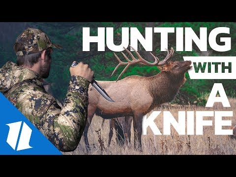 Xxx Mp4 The Best Hunting Knives Knife Banter Ep 67 3gp Sex