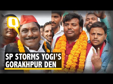 Xxx Mp4 In UP Bypolls Cycle Riding Elephant Crushes Yogi's Gorakhpur Fort 3gp Sex