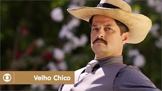 Velho Chico: capítulo 86 da novela, terça, 21 de junho, na Globo