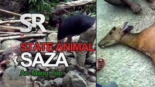 SR : Mizoram State Animal An Mang Tep [25th Sept, 2015]