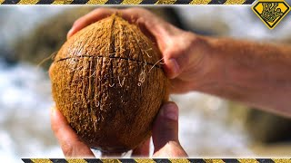 How To Open Coconuts Without Any Tools