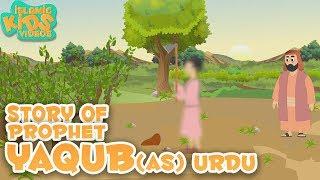 Urdu Islamic Cartoon For Kids | Prophet Yaqub (AS) Story | Quran Stories For Kids in Urdu