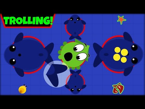 MOPE.IO TROLLING | BLUE WHALE TROLLING | MOPE.IO Funny Moments | MOPE.IO NEW UPDATE (Mope.io)